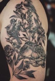 男生手臂上黑灰点刺简单线条植物花朵和小鸟纹身图片