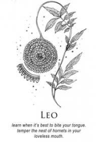 黑色线条唯美精致的创意花朵藤纹身手稿
