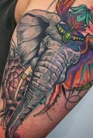 男生手臂上彩绘水彩素描创意精美大象纹身图片