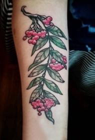 女生手臂上彩绘渐变简单线条植物叶子和果实纹身图片
