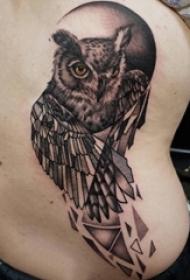 男生后腰上黑色点刺几何简单线条小动物猫头鹰纹身图片
