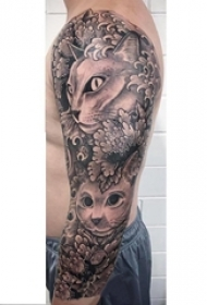 男生手臂上黑灰素描点刺技巧创意猫咪花朵花臂纹身图片