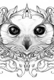 黑灰素描创意文艺精致猫头鹰纹身手稿