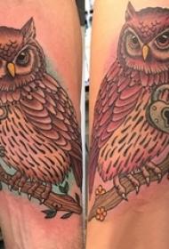 情侣纹身情侣手臂上猫头鹰纹身图片