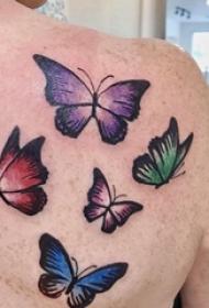 女生后背上彩绘渐变简单线条动物蝴蝶纹身图片