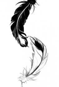 黑灰素描点刺技巧创意经典文艺唯美羽毛阴阳纹身手稿
