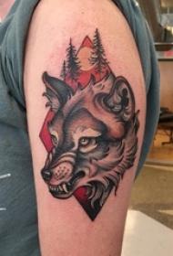 男生手臂上彩绘水彩素描恐怖狼头纹身图片