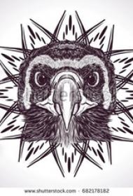 黑灰素描创意文艺有趣动物猫头鹰纹身手稿