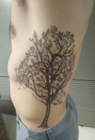 男生侧腰上彩绘渐变简单线条植物大树纹身图片