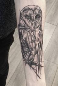 百乐动物纹身 男生手臂上黑色的猫头鹰纹身图片