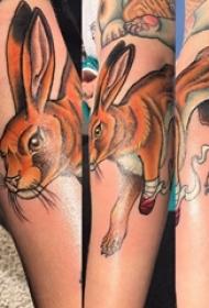 兔子纹身图案 女生手臂上可爱纹身兔子纹身图案
