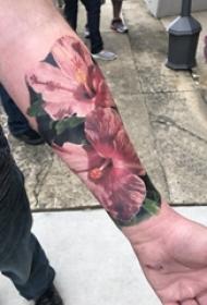 手臂纹身素材 男生手臂上彩色的芙蓉花朵纹身图片