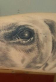 手臂纹身素材 男生手臂上黑灰的小狗纹身图片