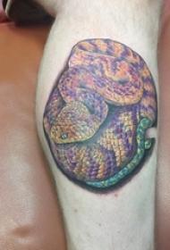 欧美小腿纹身 男生小腿上彩色的蛇纹身图片