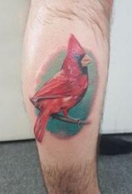纹身鸟 男生小腿上彩色的鸟纹身图片