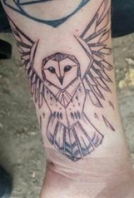 猫头鹰纹身图案 男生手臂上猫头鹰纹身图案