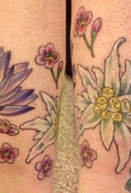 文艺花朵纹身 女生小腿上文艺花朵纹身彩色图案