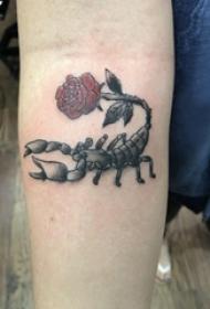 手臂纹身素材 女生手臂上玫瑰和蝎子纹身图片