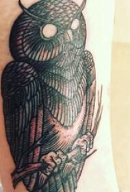 纹身猫头鹰  女生小臂上黑色的猫头鹰纹身图片