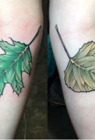 树叶纹身图 女生手臂上彩色的树叶纹身图片
