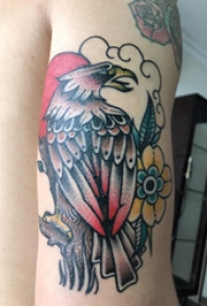 纹身老鹰图片  女生手臂上老鹰和花朵纹身图片