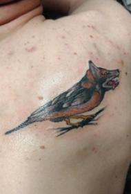 百乐动物纹身 男生后背上狼头和鸟纹身图片