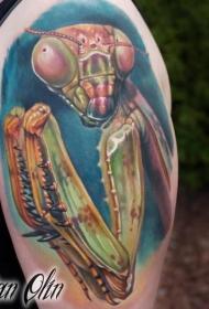 螳螂纹身图案  形态百变的螳螂纹身图案
