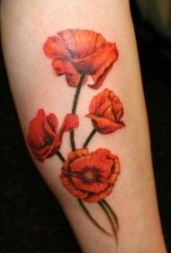 罂粟花纹身图片   美丽却致命的罂粟花纹身图案
