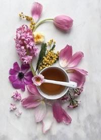 鲜花与茶自然搭配的摄影作品