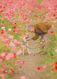 狗狗陪伴老人的暖心拍摄九张图片欣赏