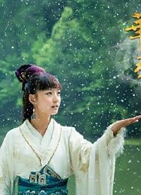 华胥引定档0709 男主郑嘉颖和女主林源精美剧照集合