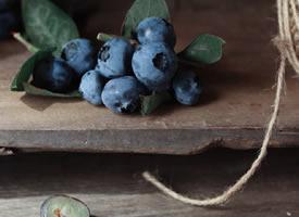 在夏秋季节成熟起来的蓝莓果,一个个蓝盈盈的薄皮、珠光宝气