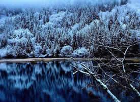 冬季的九寨仍然那么美!像仙境一样!