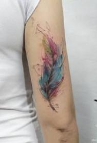 一组羽毛题材的水彩羽毛纹身图案9张