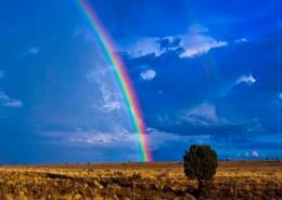 美丽的彩虹图片_11张