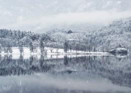 冬天下雪时的美景图片_12张