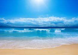 海滩图片_61张