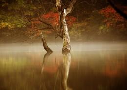 湖光山色图片_41张