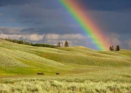 七色的彩虹图片_15张