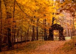秋季美丽风景图片_20张