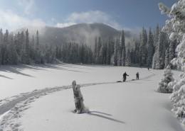 白茫茫的雪景图片_10张
