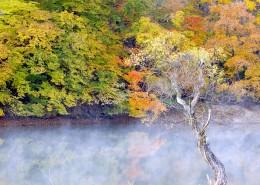 云雾缭绕风景图片_29张