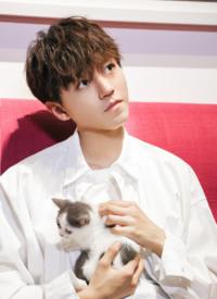 王俊凯元气吸猫写真图片