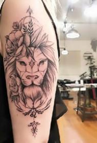 狮子线条:漂亮的一组适合狮子座的线条狮子纹身图案