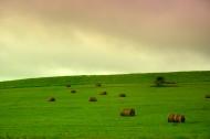 内蒙古阿尔山国家森林公园风景图片_21张