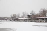 天津北宁公园雪景图片_23张