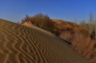 内蒙古鄂尔多斯恩格贝沙漠风景图片_11张