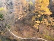 浮石林峡谷风景图片_9张