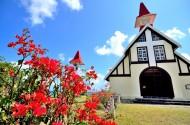 非洲毛里求斯风景图片_17张