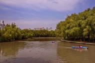 上海世纪公园风景图片_10张